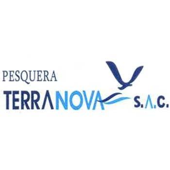 terranova_square