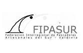 Federación Interregional de Pescadores Artesanales del Sur – Valdivia (FIPASUR)