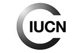 International Union for the Conversation of Nature (IUCN)