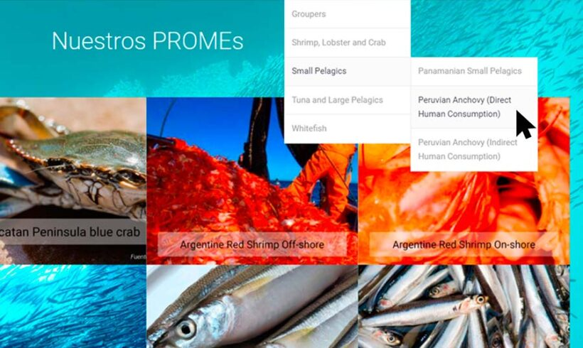 LATINOAMÉRICA. Los PROMEs (FIPs) logran cambios en la legislación pesquera