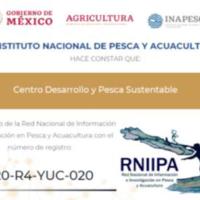 CEDEPESCA-MÉXICO: Incorporación a la Red Nacional de Información Pesquera RNIIPA