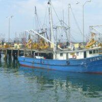 LEY DE PESCA EN PANAMÁ: Un proyecto que recoge las mejores prácticas internacionales de legislación pesquera
